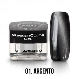 MagnetiColor Gel - 01 - Argento - 4g