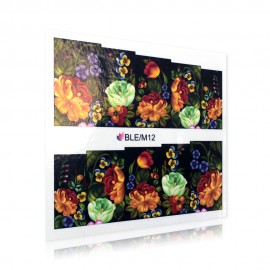 Flower pattern sticker - BLE/M12