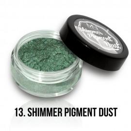 Shimmer Pigment Dust - 13 - 2g
